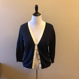 NWT the Limited blue/white sweater